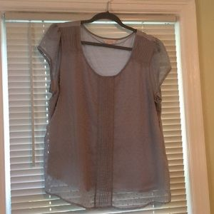 LC short sleeved top